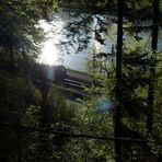 Das Licht, der Fluss, die Bahn, der Wald