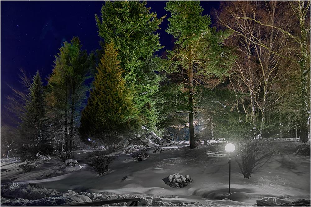 Das Licht in der Winternacht zeigt sehr schön die weiße Pracht