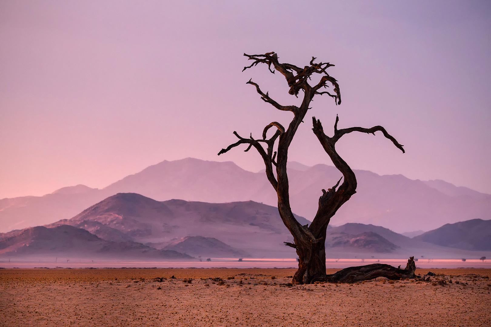 Das Licht Namibias