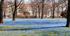 "das Magdeburger ""Blaue Wunder"""