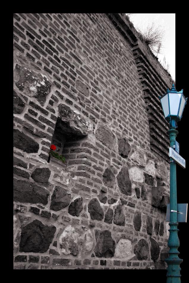 Das Mauerblümchen der Mauerstraße