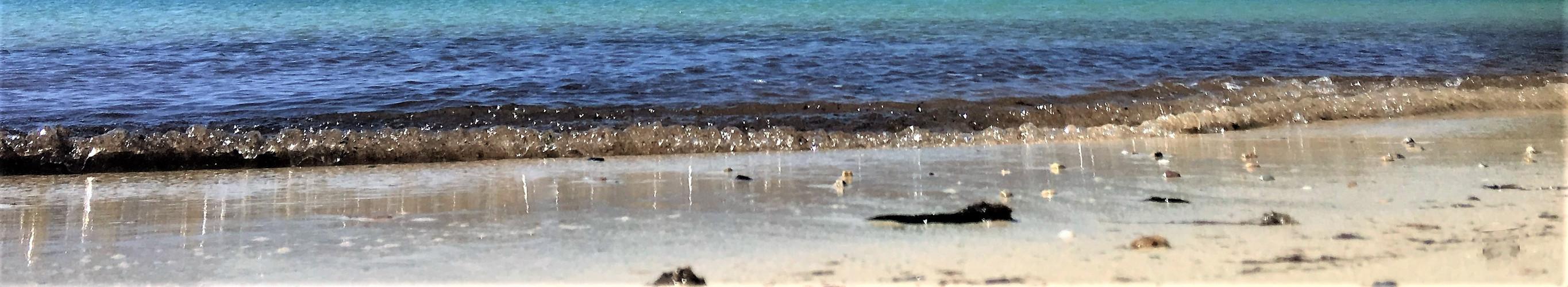 Das Meer, die Wellen, der Strand....Ruhe :-)