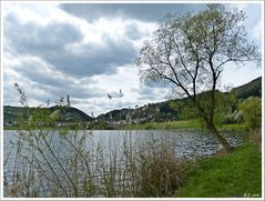 Das Meerfelder Maar in der Eifel.