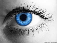 """"""" Das Menschliche Auge """""""