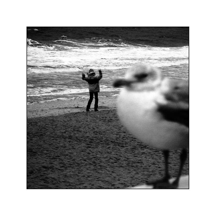 Das merkwürdige Verhalten einiger Binnenländler, wenn sie das Meer sehen ...