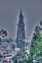 Das Münster in Freiburg