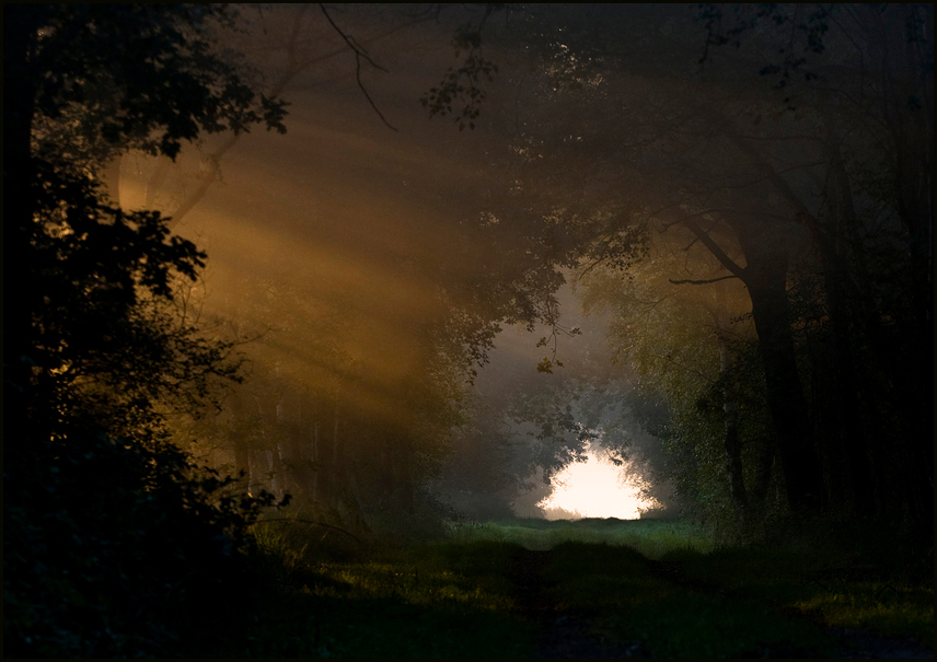Das Nebeltor