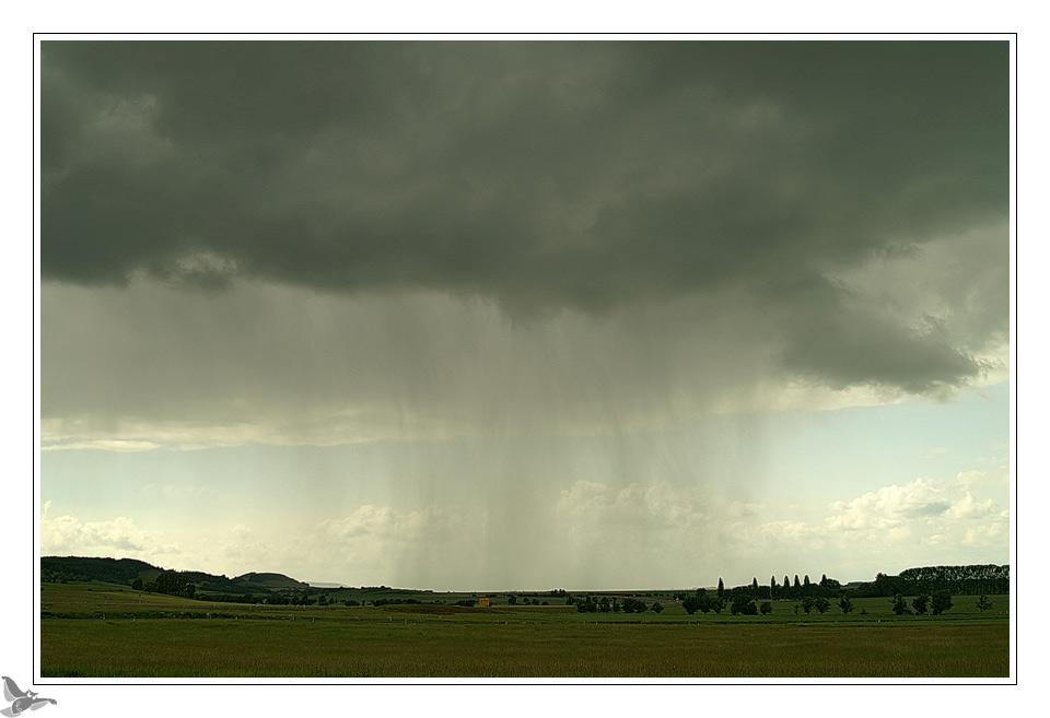 Wetterbericht Regen