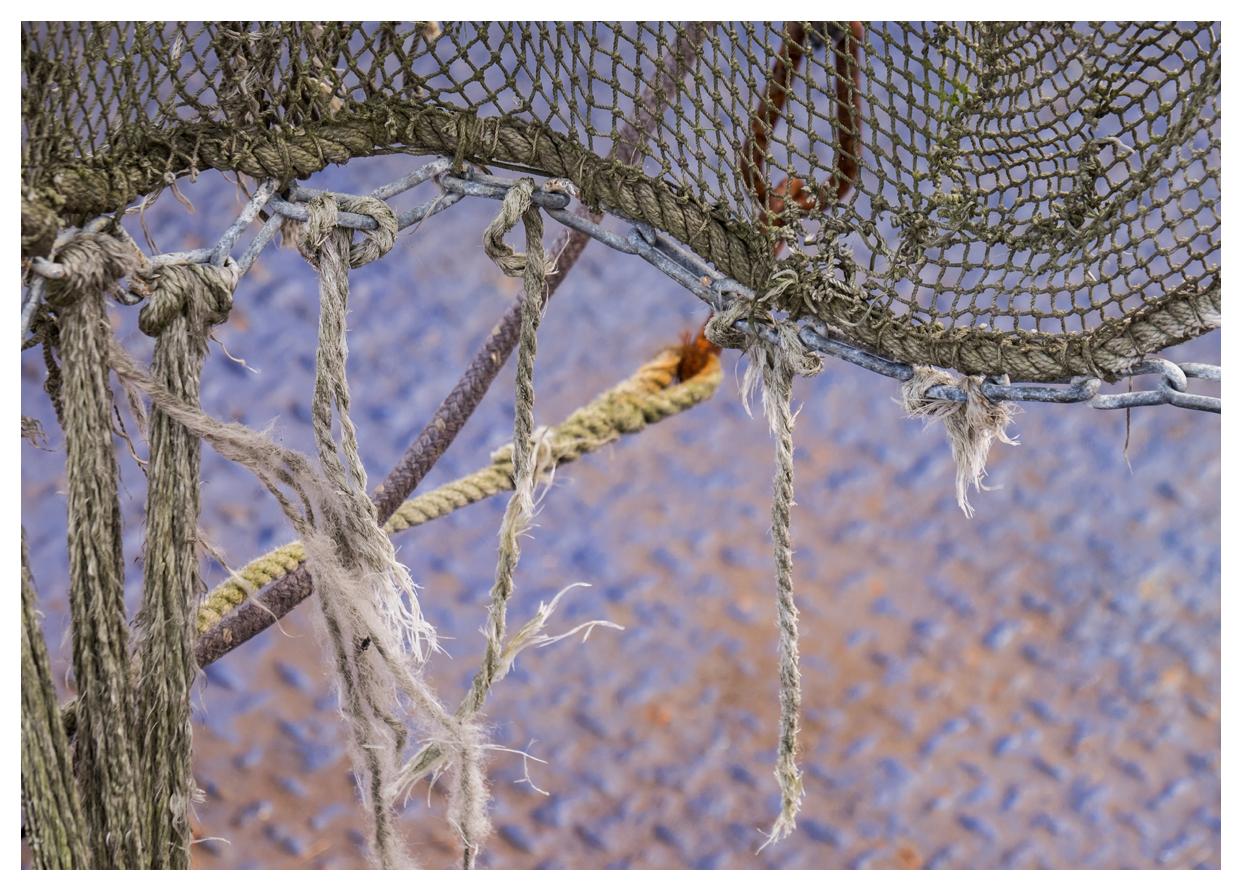 das Netz flattert im Wind