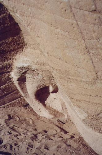 das Ohr des Pharao