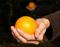 Das Orangenmädchen III