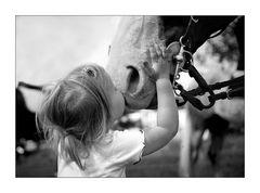 """"""" das Pferd der großen Schwester """""""