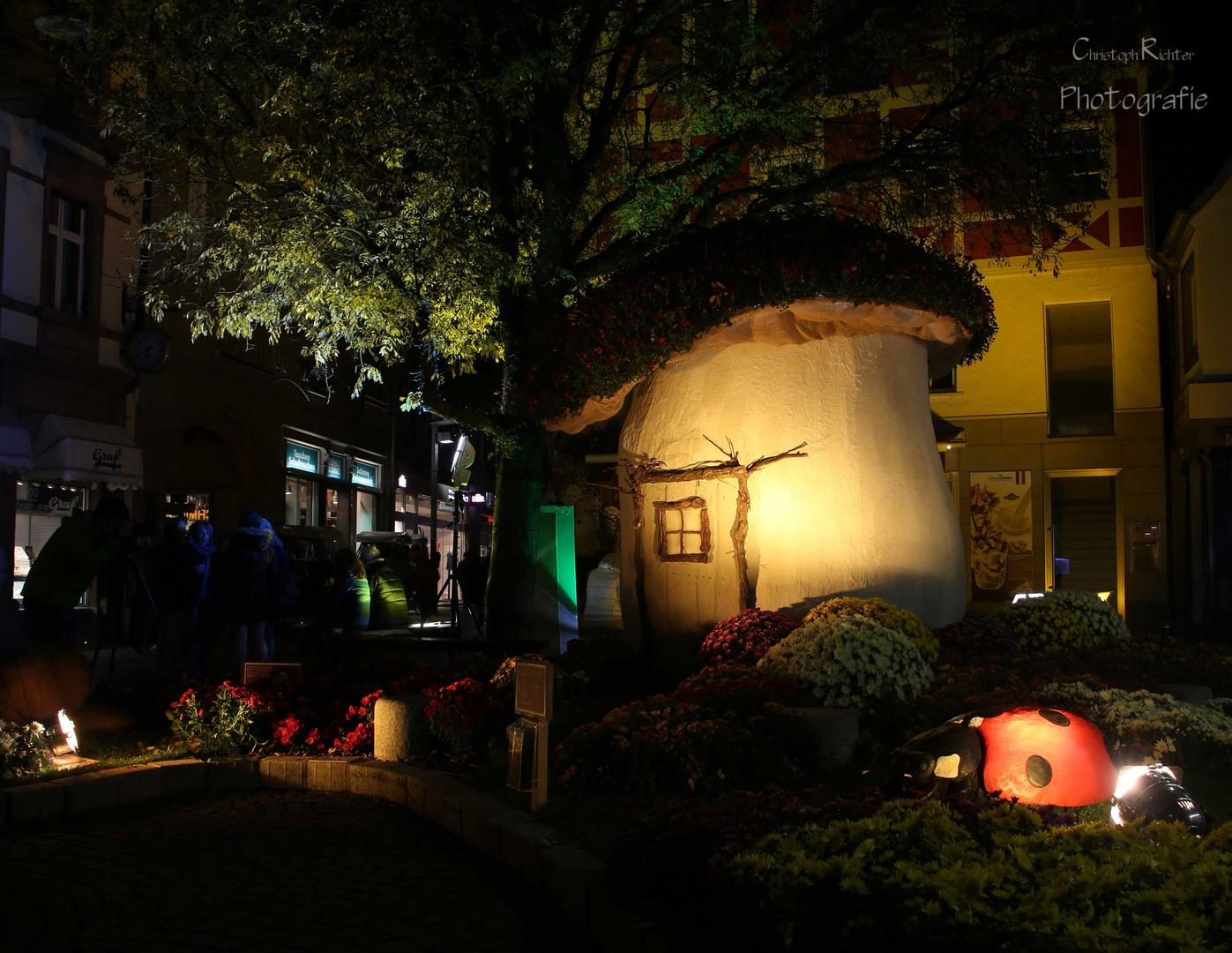 Das Pilzhaus