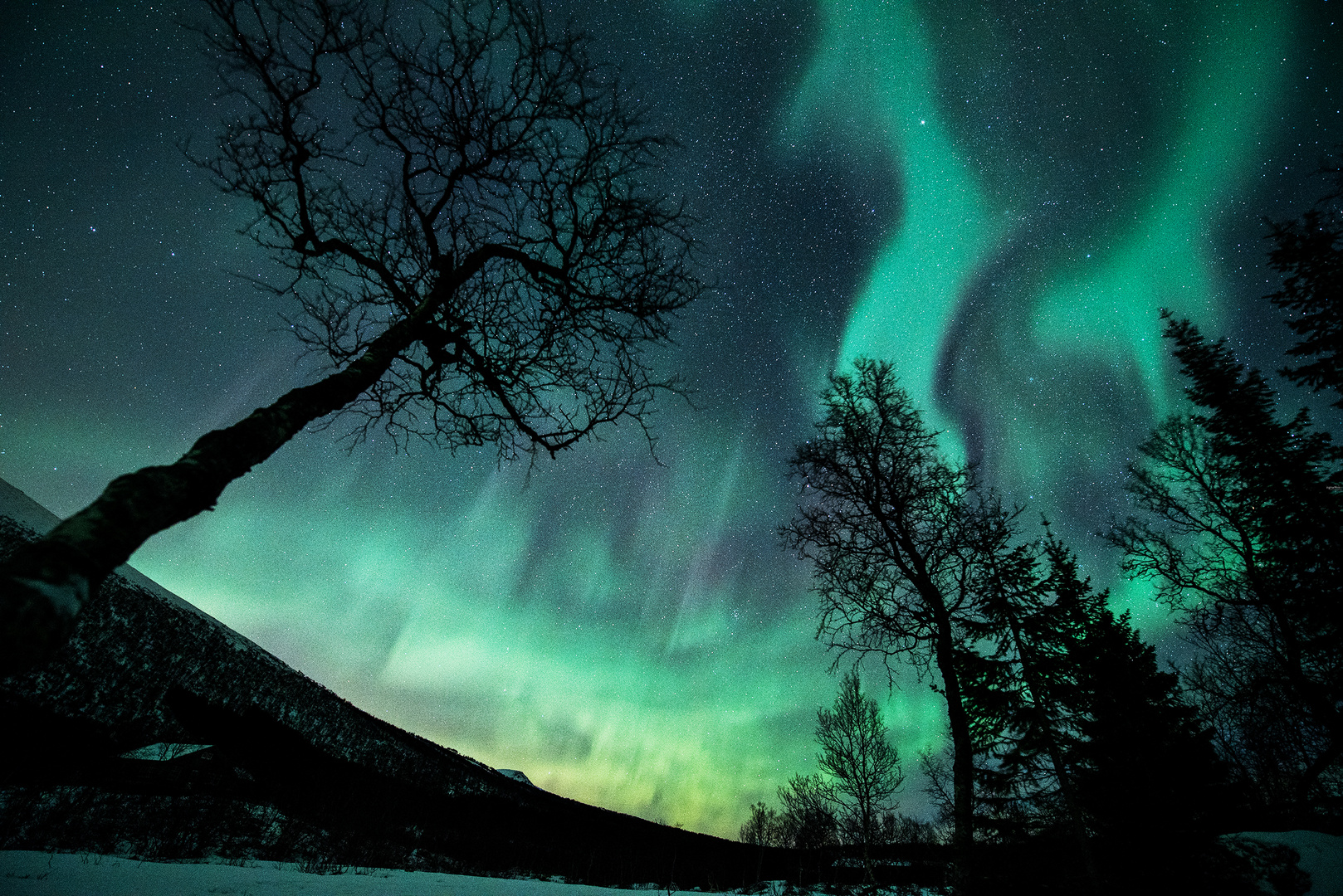 Das Polarlicht in Norwegen