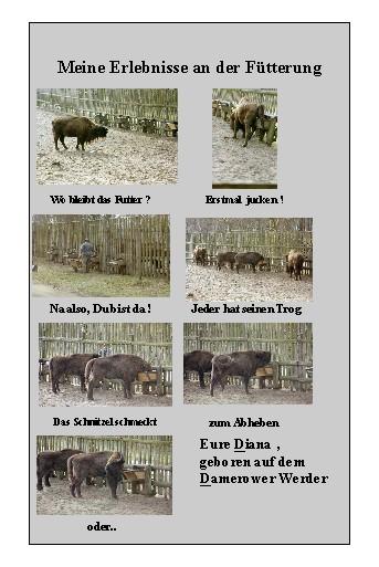 Das Reiseziel selbst für eine Kuh !