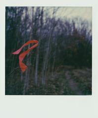 Das rote Band