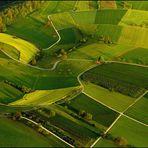 Das rote Haus im grünen Feld