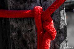 """""""Das rote Seil"""""""