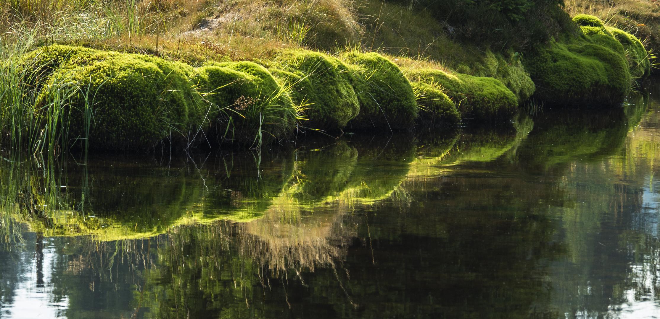 Das Saphir-Flüsschen