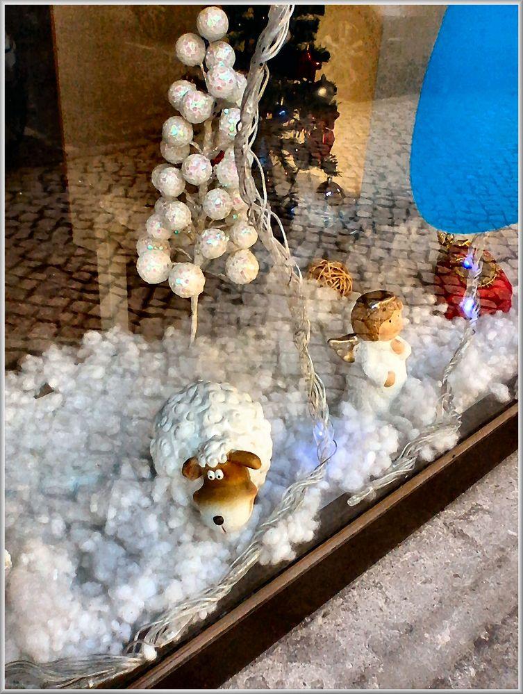 Das Schaf im Weihnachtsschaufenster