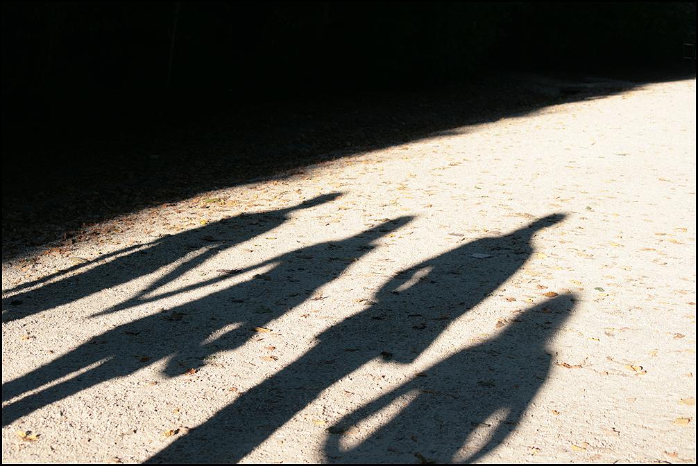 Das Schattenkabinett