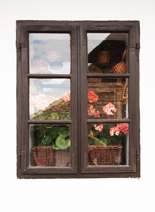 Das Schaufenster