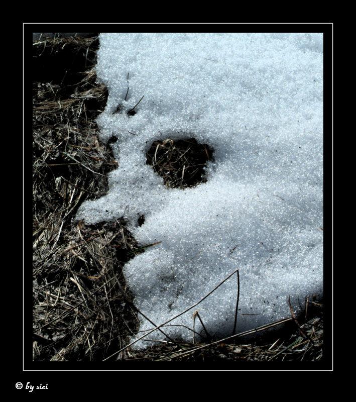Das Schneegespenst verabschiedet sich
