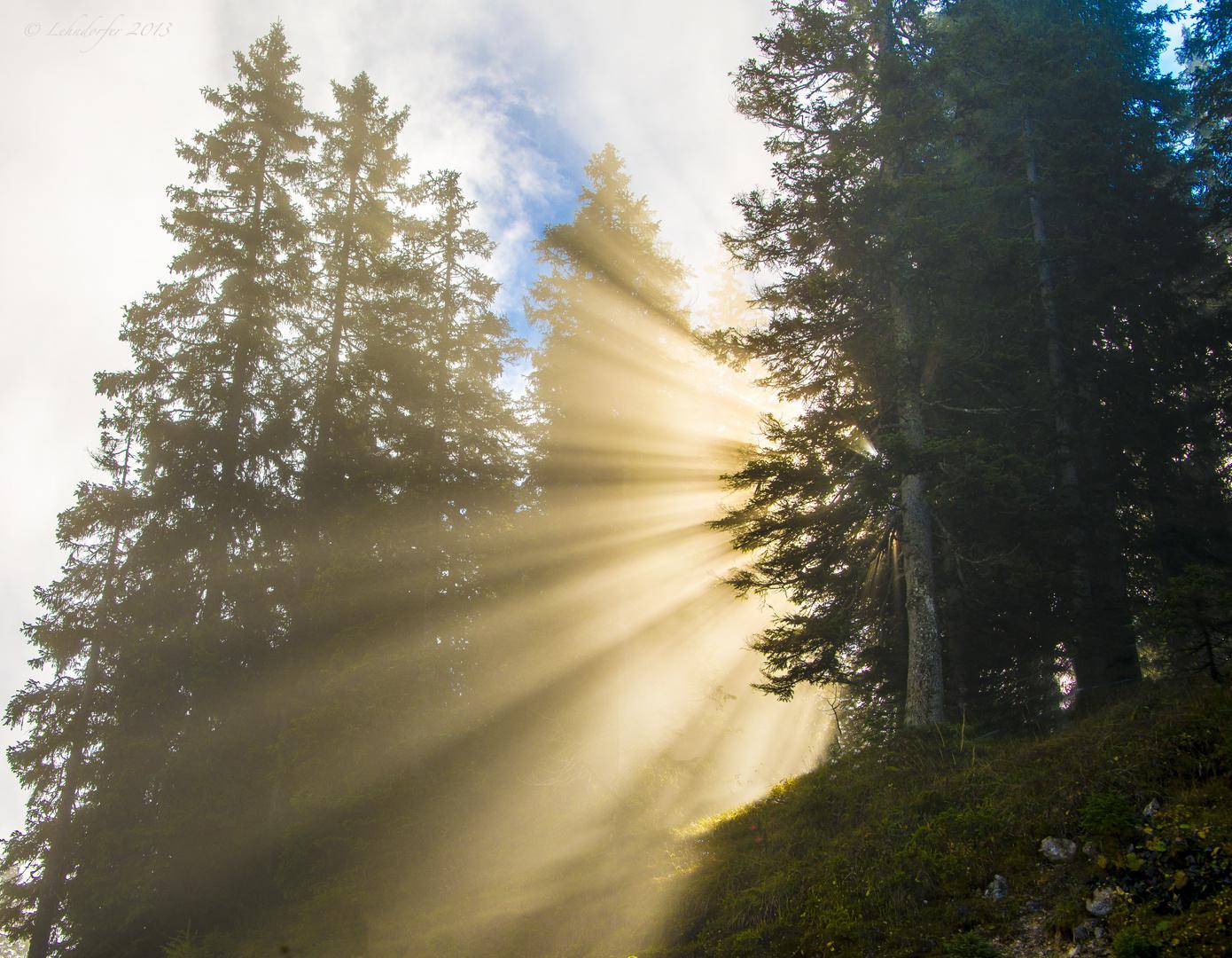 Das schönste Morgenlicht...
