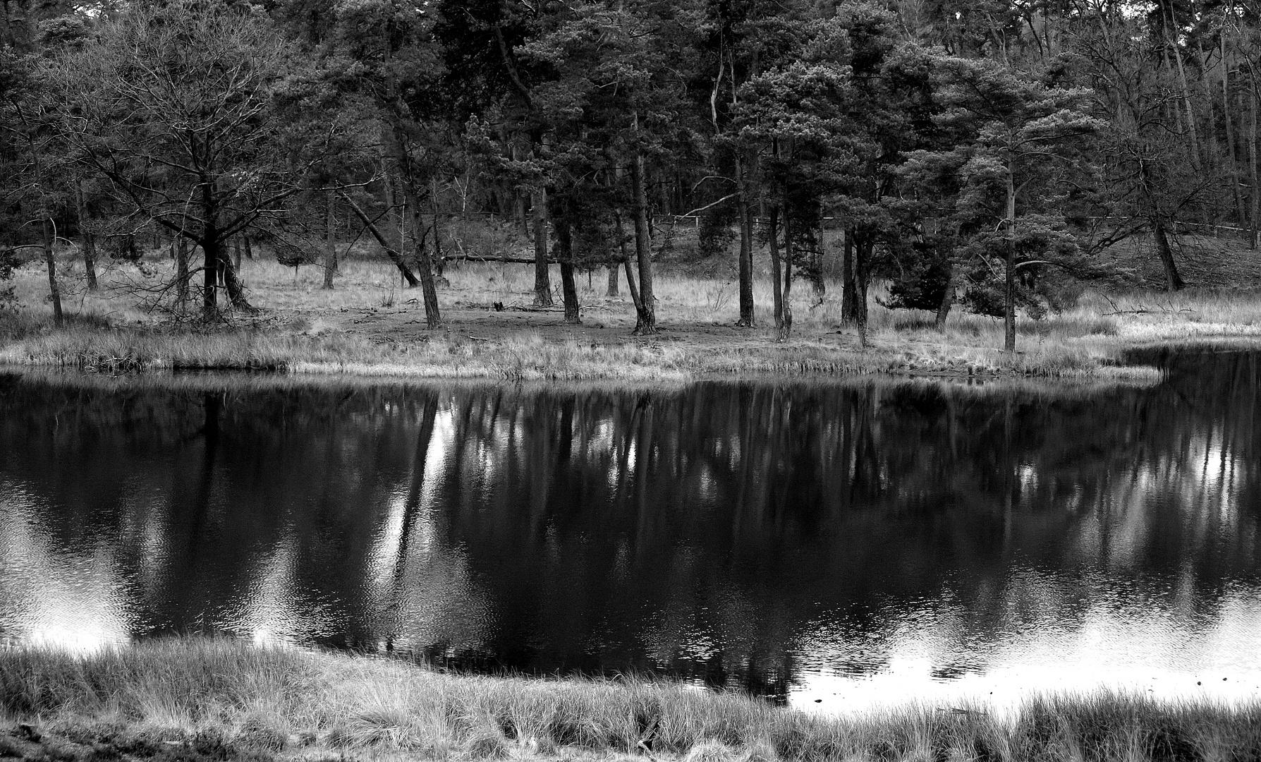 Das Schwarze Wasser in Wesel