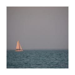 das Segelboot.