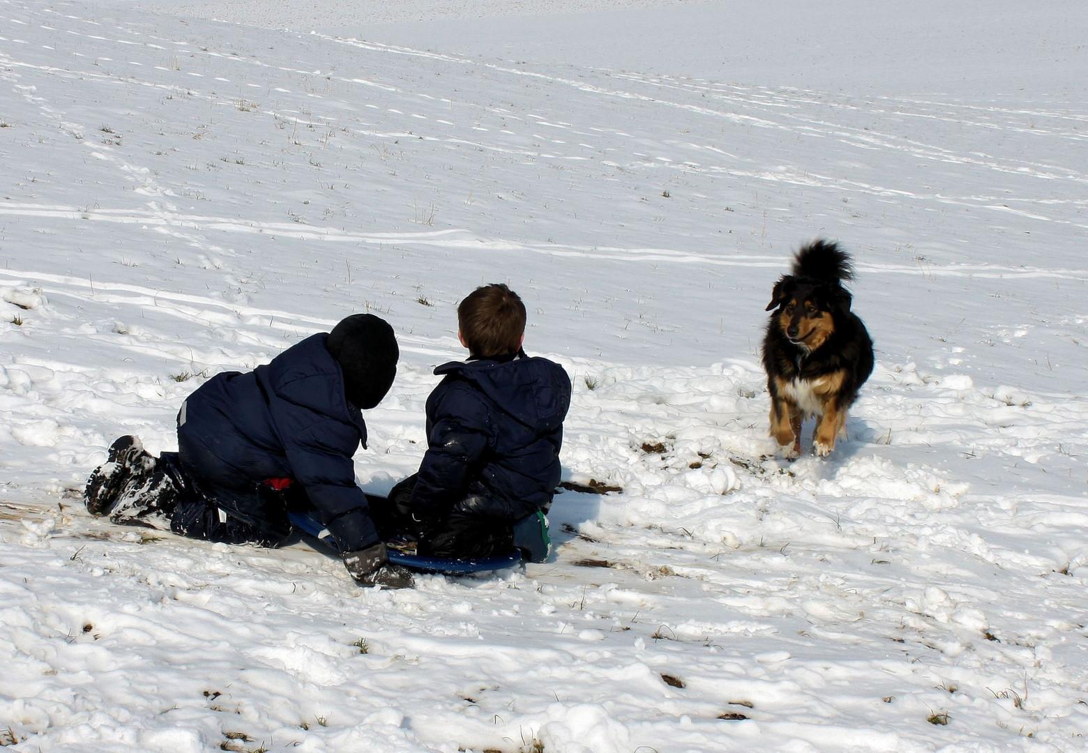 Das Spielen im Schnee...
