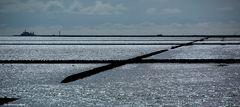 Das tägliche Kräftemessen mit der Nordsee , Lahnungen vor Lüttmersiel