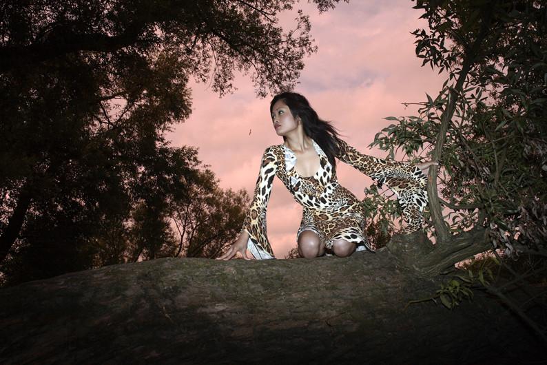 Das Tigerweibchen by Siegi Offermann