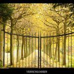 Das Tor