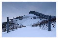 Das Tor zum Frankenwein
