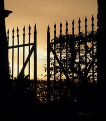 Das Tor zur Nacht.