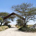 ...das Tor zur Serengeti...