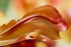 das Tulpenblatt