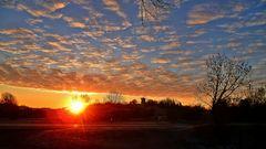 Das war ein Sonnenaufgang - da musste Ich einfach mal anhalten - die Holländer Mühle in Eckadtsberga