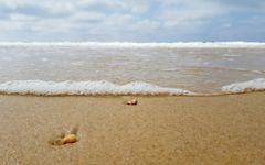 Das weite Meer