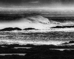 Das Wesen aus dem Meer