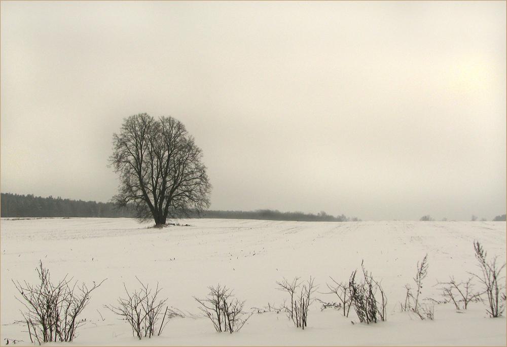 Das Wetter bei Neuruppin