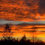...das Zeichen am Himmel: Angst - (Edvard Munchs Himmel...)