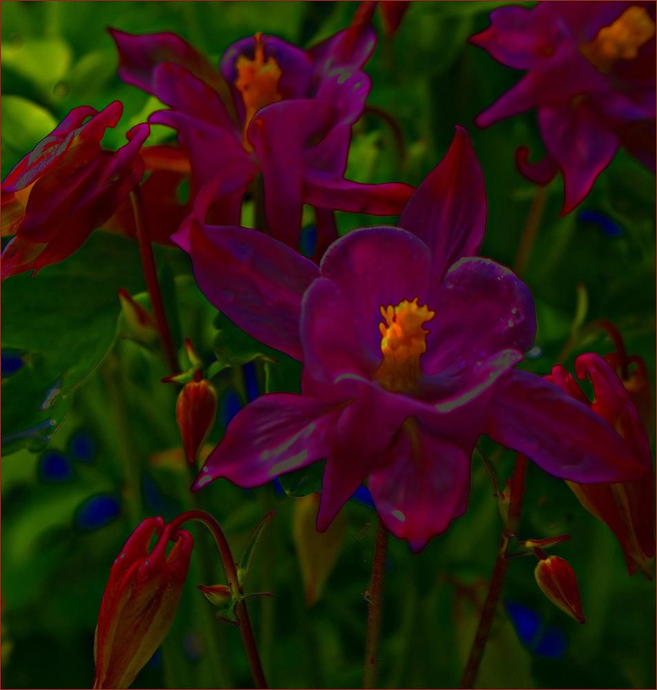 Dasetwasanderewochenendblümchen