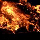 DasOsterfeuer