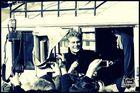 David Hasselhoff als Demonstrant vor der east-side gallery