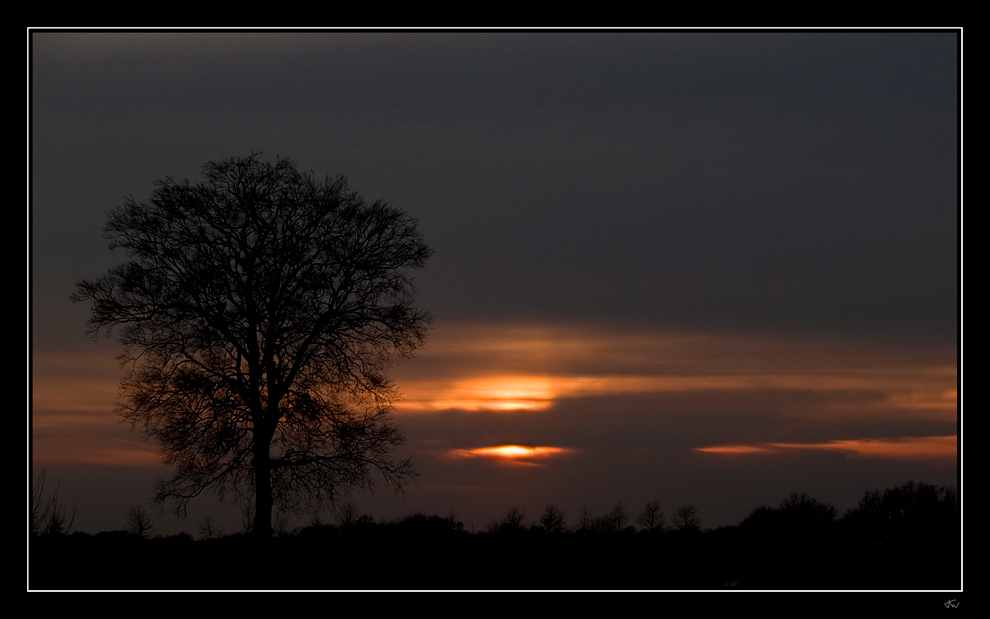 Dawn of night IV