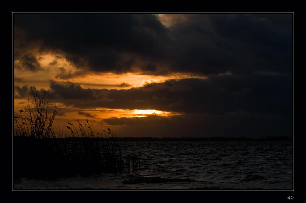 Dawn of night V