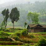 De camino al Tibet.....(Dedicada a Carmeta)