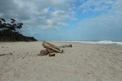 De la serie composiciones en la playa 13